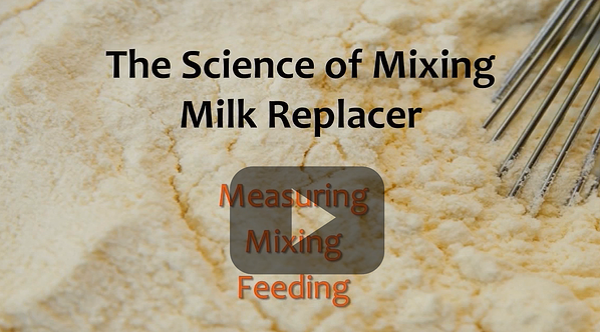 milk-replacer-video